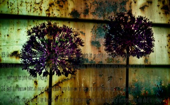 Rustflowers - Abstract Flowers